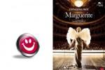 Marguerite-grain-de-sel
