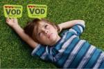 boyhood-VODPS