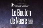 le-bouton-de-nacre-2015-alaune-copyright-700