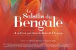 le-salsifis-du-Bengale-Desnos-alaune-copyright-700