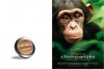 chimpanzes-smil