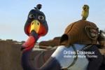 slid-oiseau
